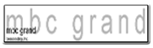 MBC Grand Broadcasting