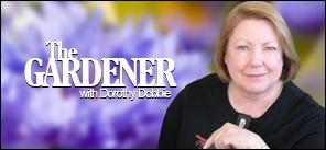 The Gardener with Dorothy Dobbie