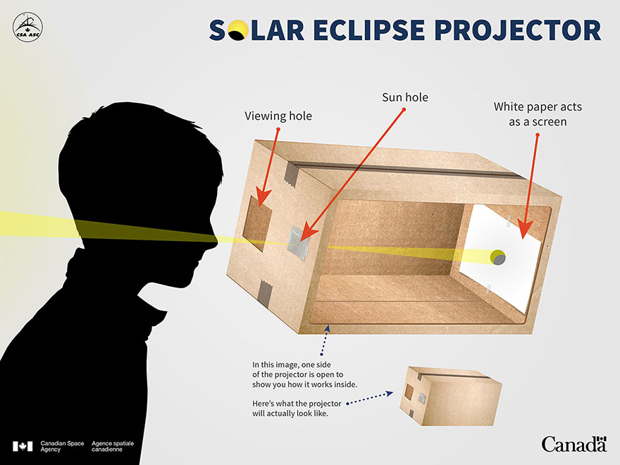 Build Your Own Solar Eclipse Projector
