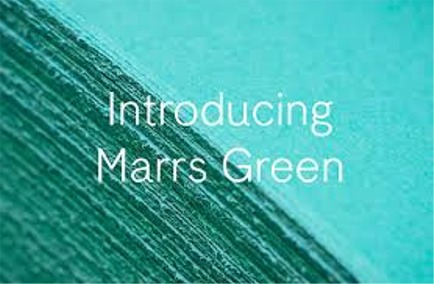 The World's Favorite Color Is Marrs Green