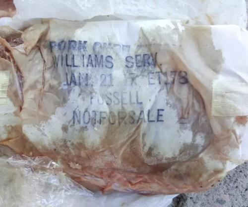 Fla. Family Perplexed by Frozen Sausage on Their Roof