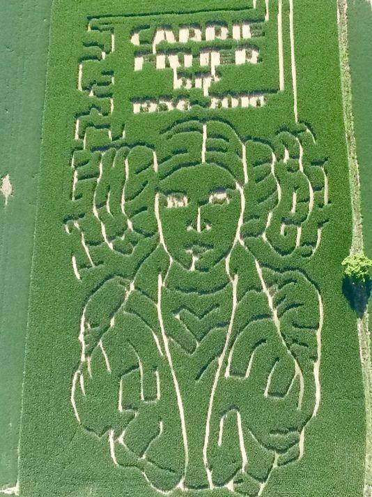 Indiana Farmer Creates Corn Maze in the Shape of Princess Leia
