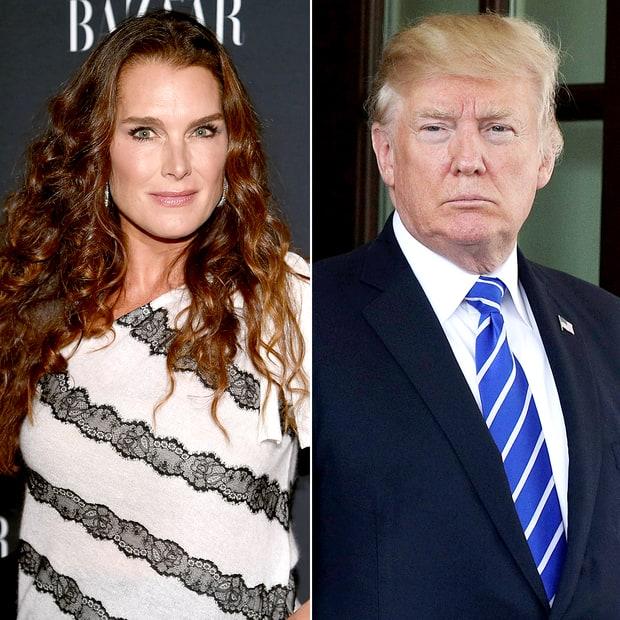 Cringe Worthy Pick Up Line Donald Trump Used on Brooke Shields