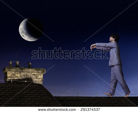 The Odd Things We Do When We Sleepwalk