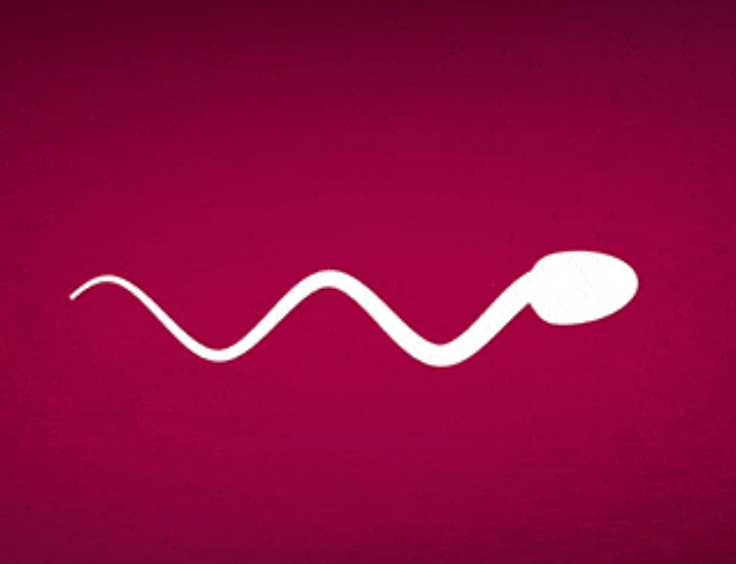 New Male Birth Control Could Literally Make Your Sperm Stop Swimming