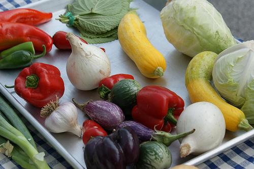 Gundersen to host Farmer's Market