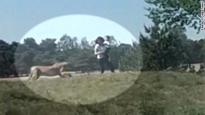 We Have The Scary Video Of A Family Being Chased By Cheetahs