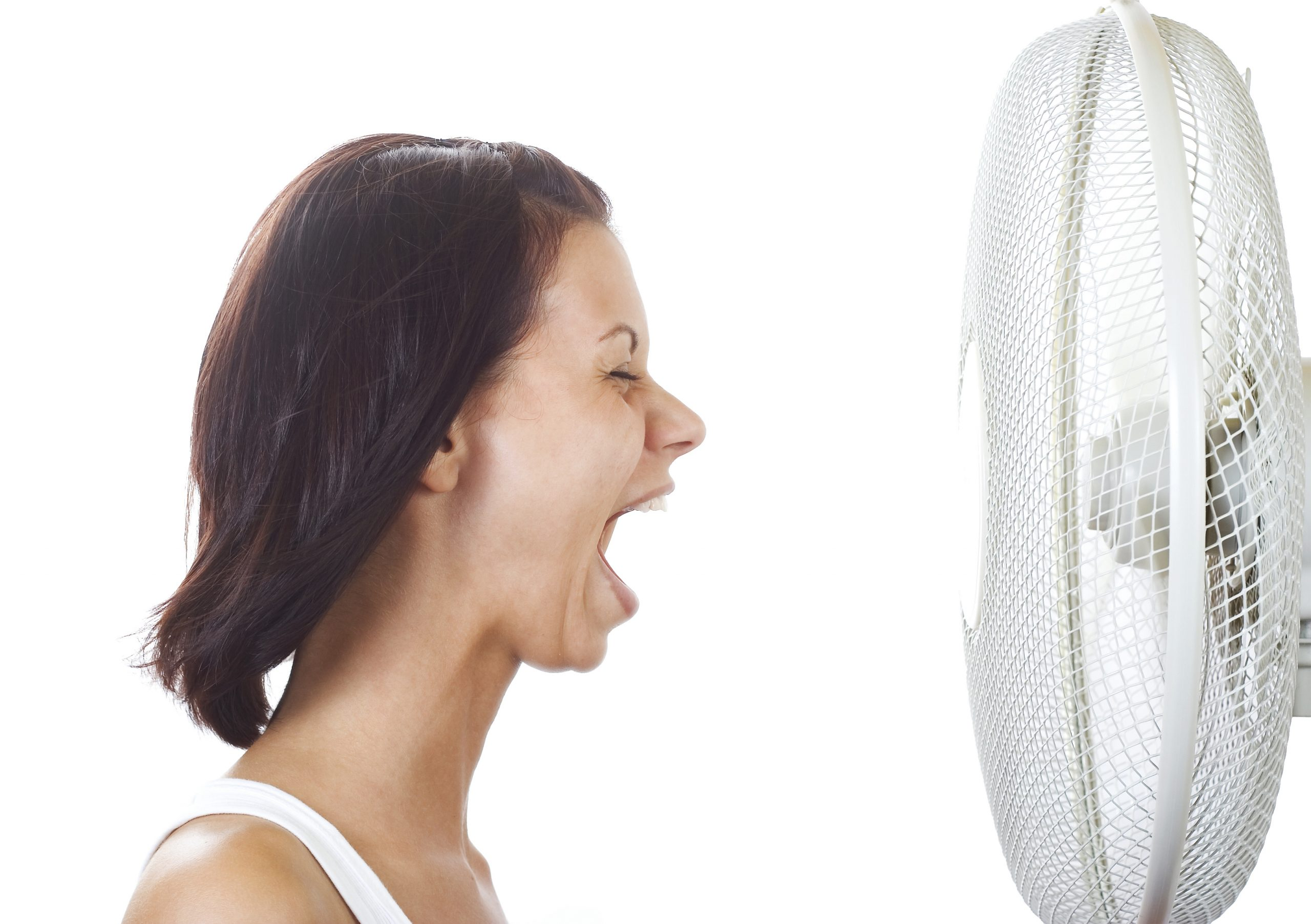 What's a Heat Pump? They're Hot!…and Cool!
