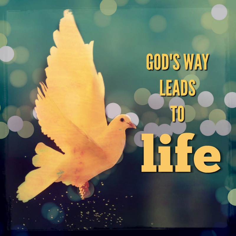 God's Way Leads to Real Life