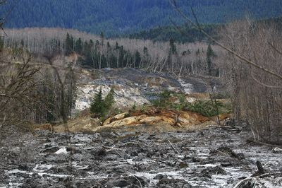 Snohomish County Mudslide Info and Resources