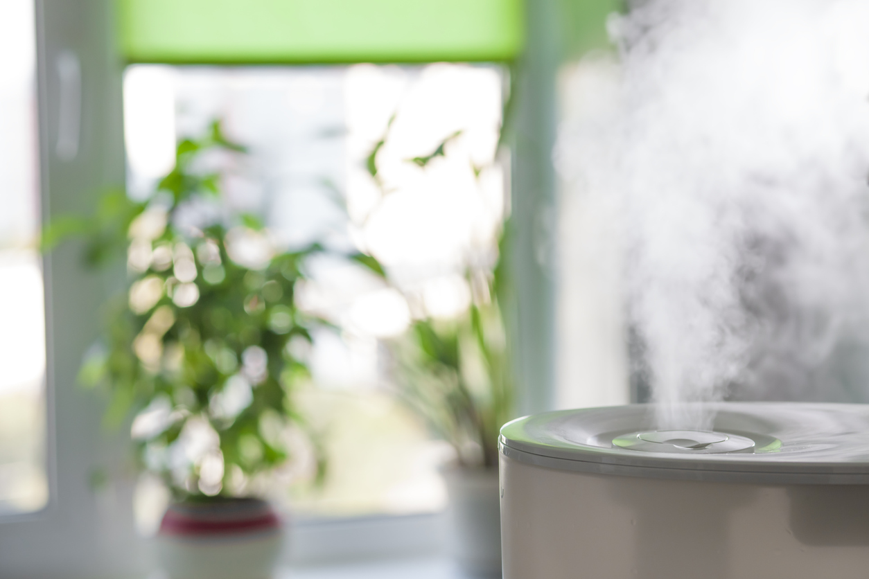 Comfort 101: A Guide to Humidifiers