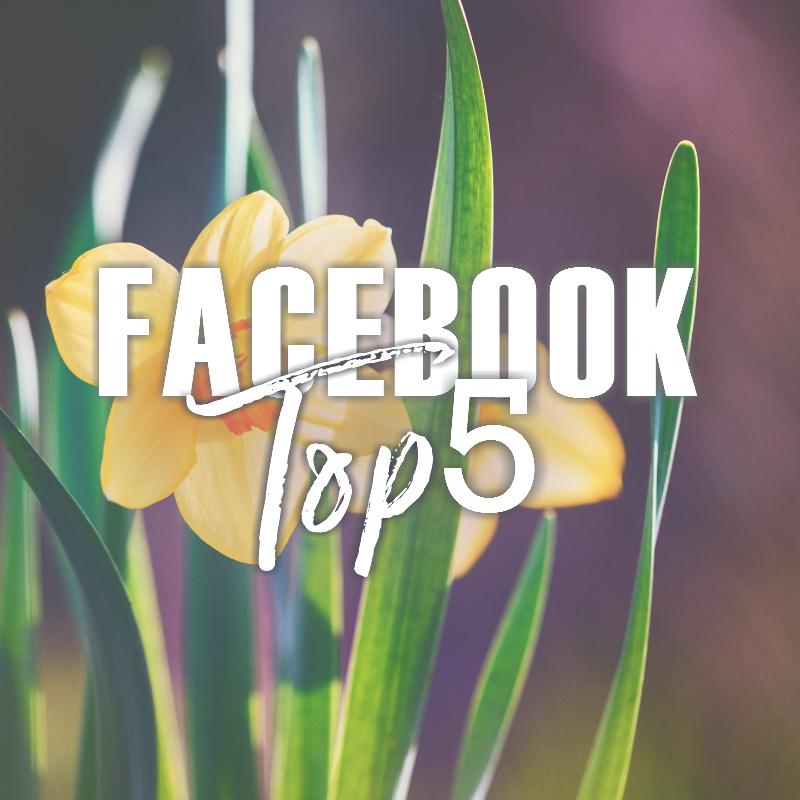 Facebook Top 5 (4/7-4/13)