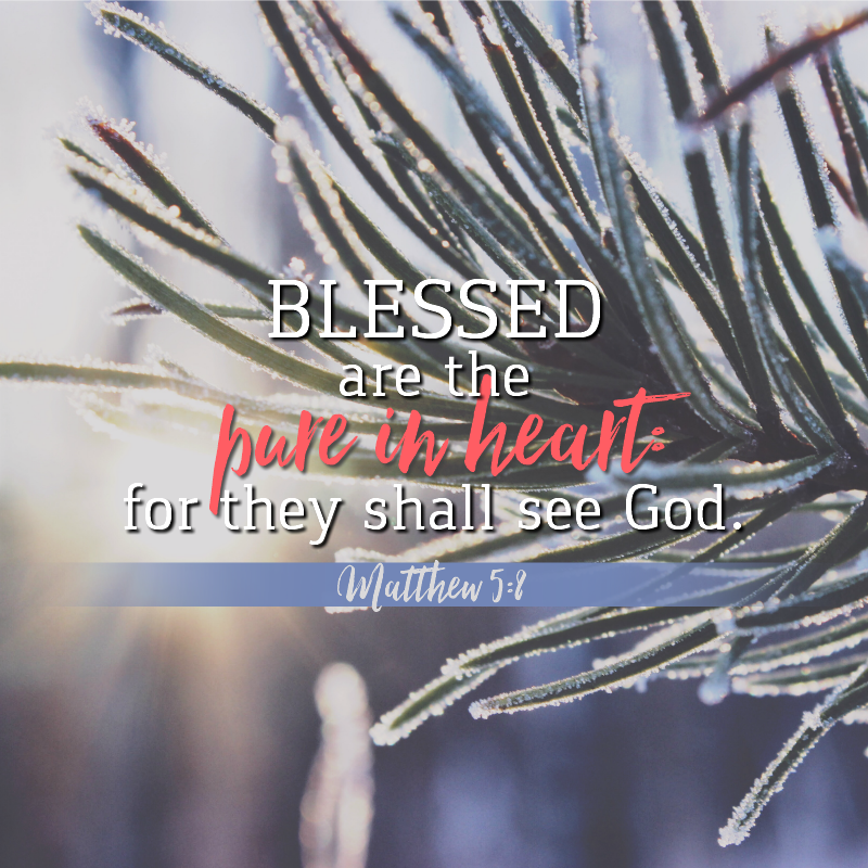 Matthew 5:8-