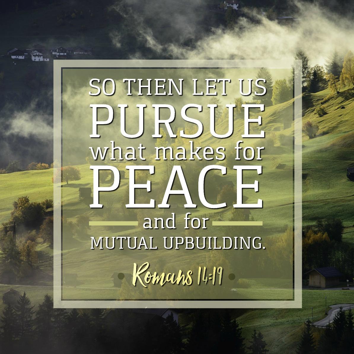 Romans 14:19