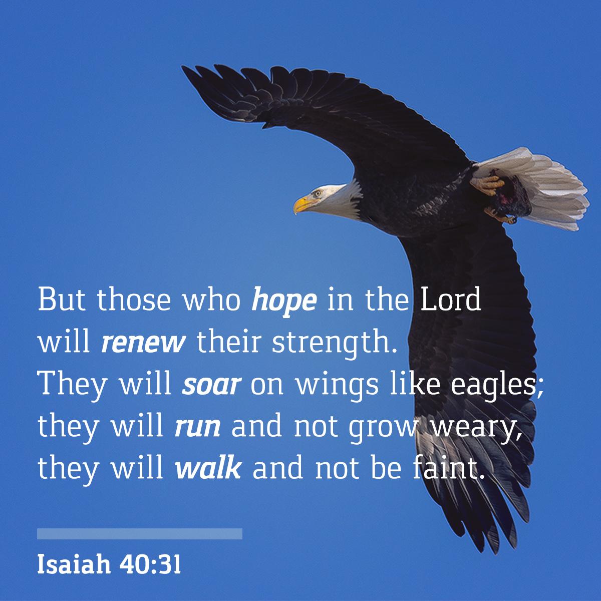 Isaiah - 40:31