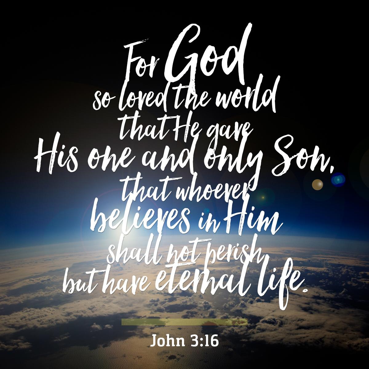 John 3:16 - Daily Verse