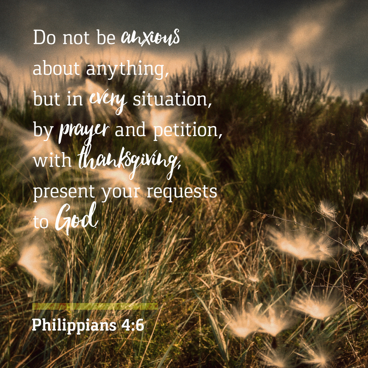Philippians 4:6 - Daily Verse