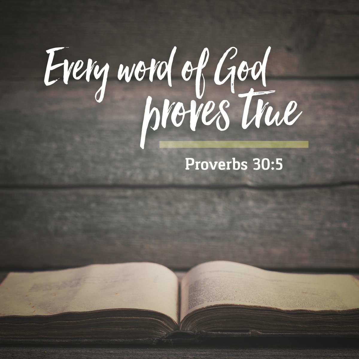 Proverbs 30:5 - Daily Verse