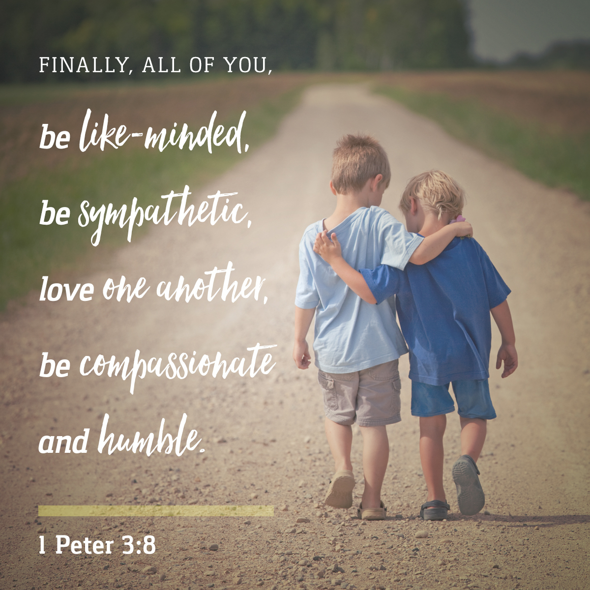1 Peter 3:8 - Daily Verse