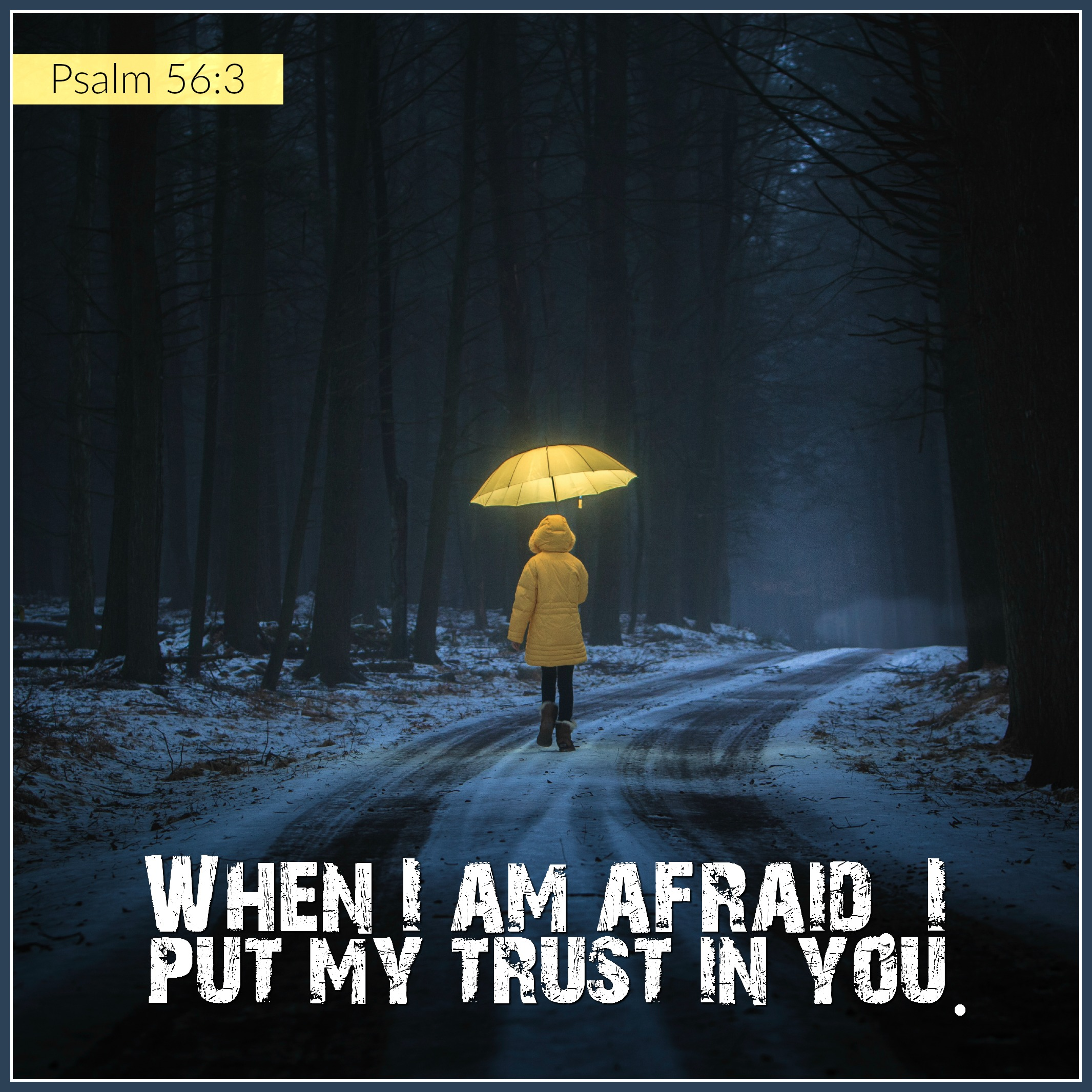 Daily Verse: Psalm 56:3