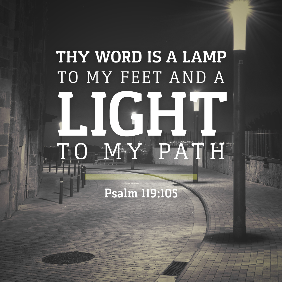 Psalm 119:105 Daily Verse