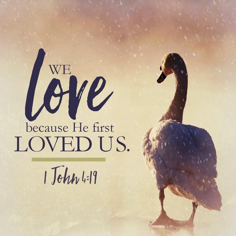 1 John 4:19-