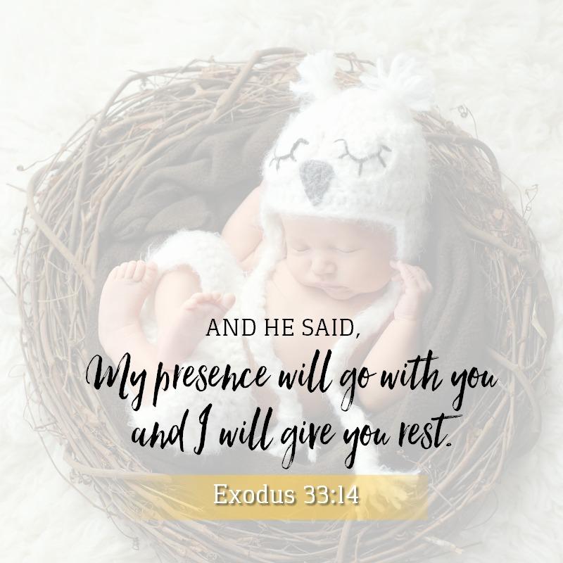 Exodus 33:14-