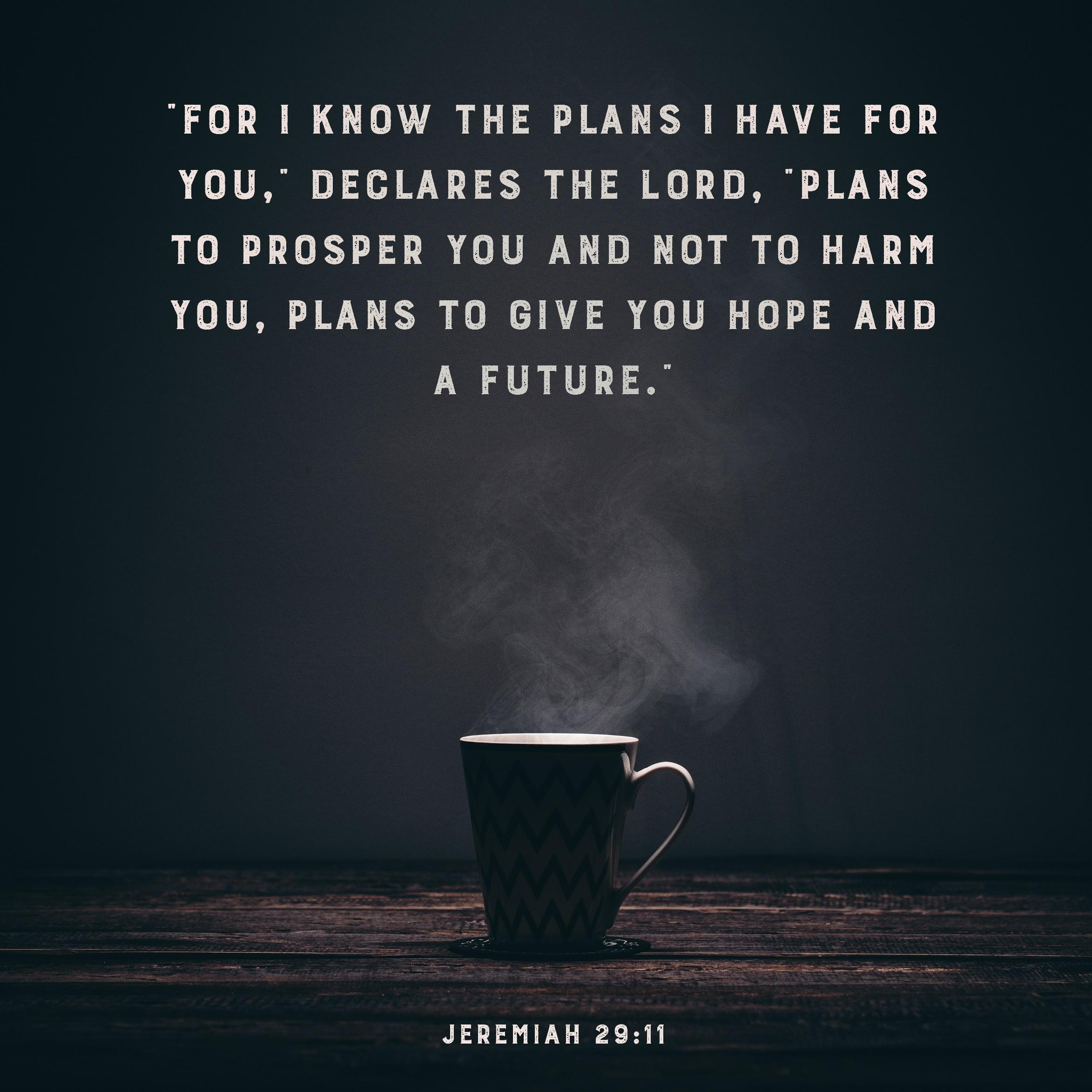 Daily Verse: Jeremiah 29:11