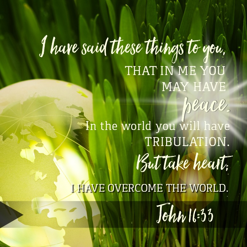 Daily Verse: John 16:33