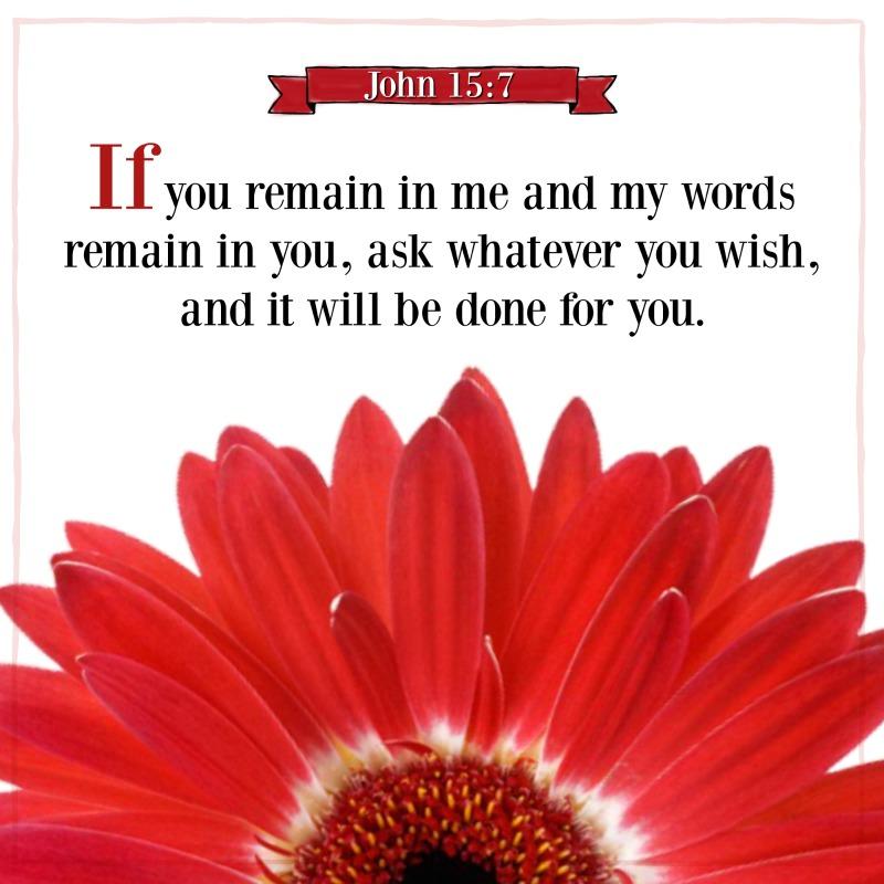 Daily Verse: John 15:7