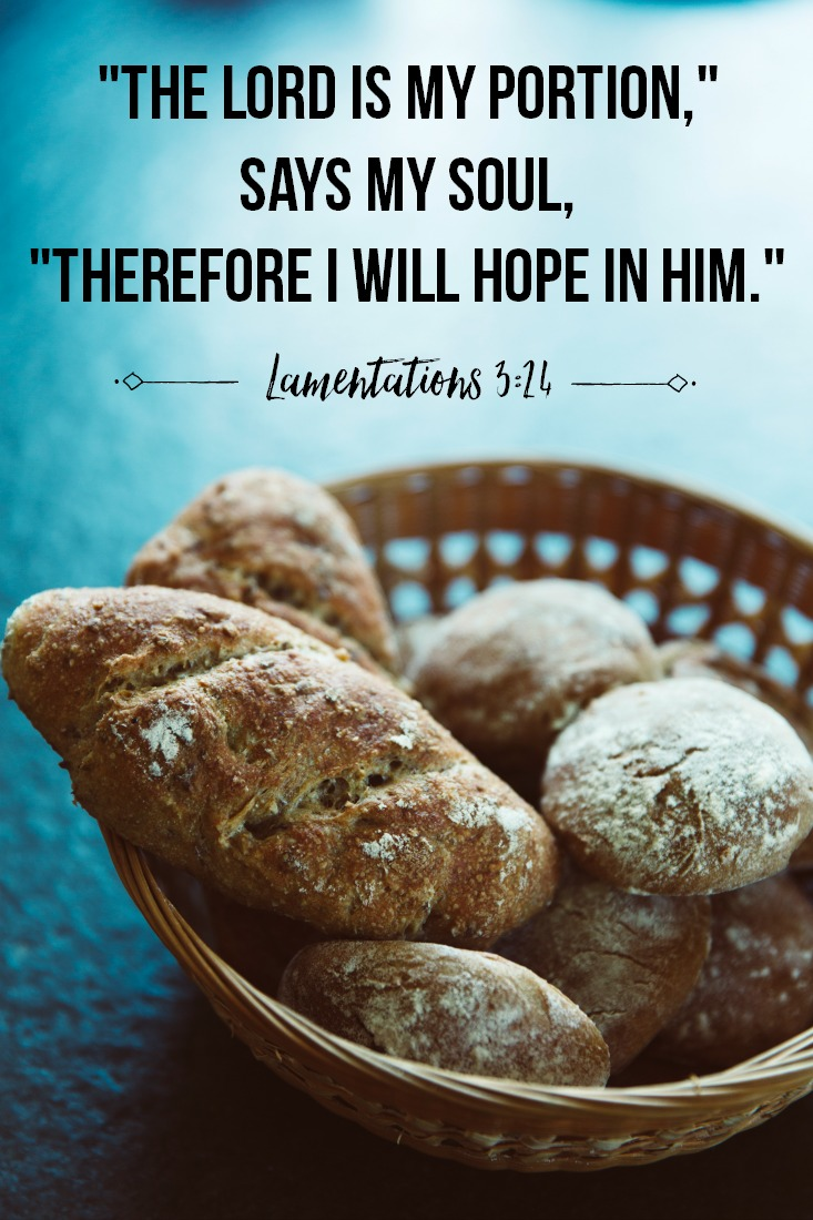 Daily Verse: Lamentations 3:24
