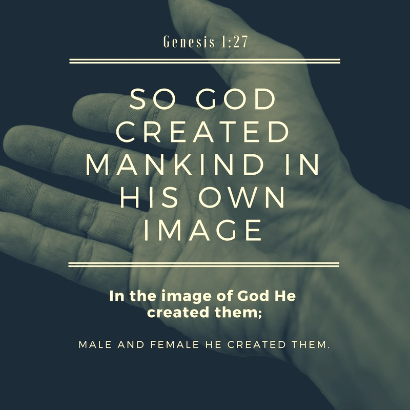 Daily Verse: Genesis 1:27