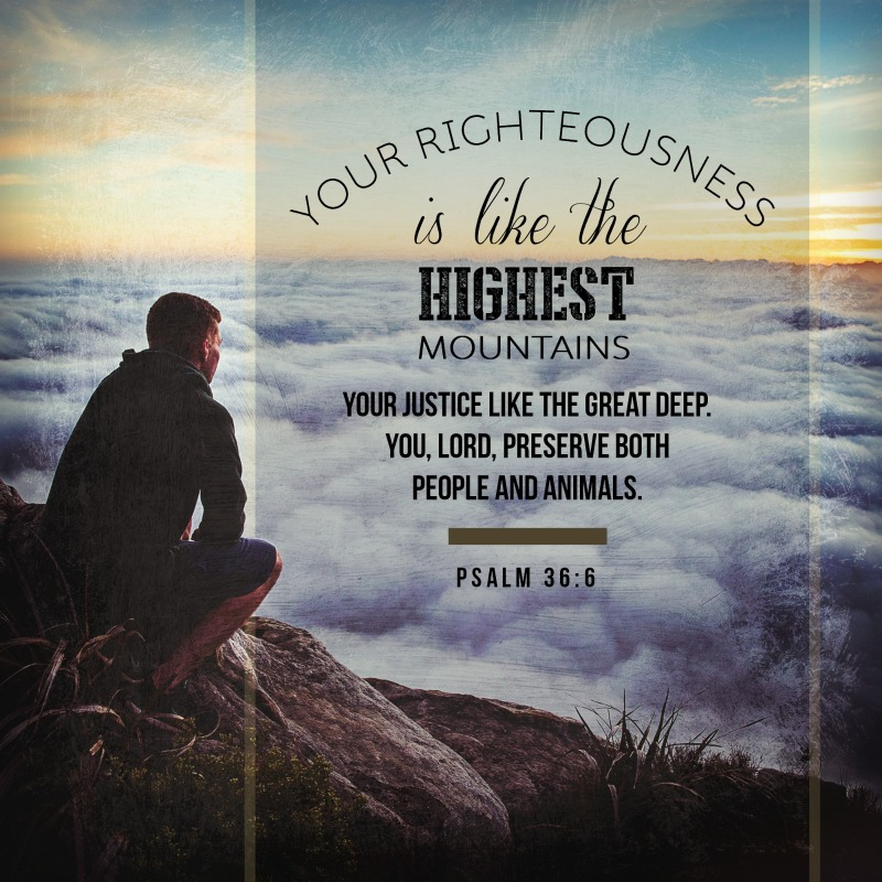 Daily Verse: Psalm 36:6