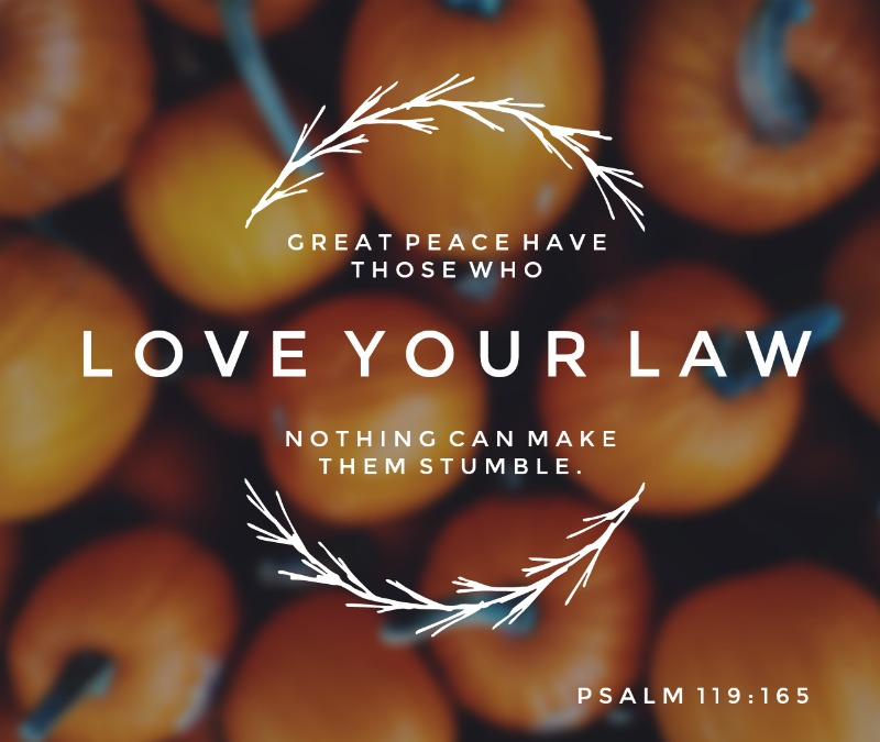 Daily Verse: Psalm 119:165