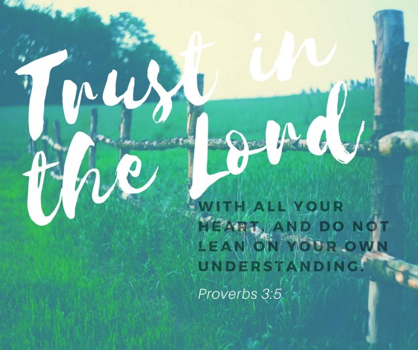 Daily Verse: Proverbs 3:5