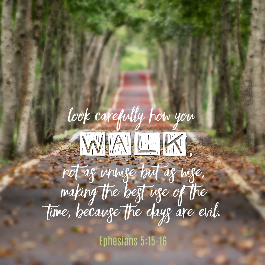 Daily Verse: Ephesians 5:15-16
