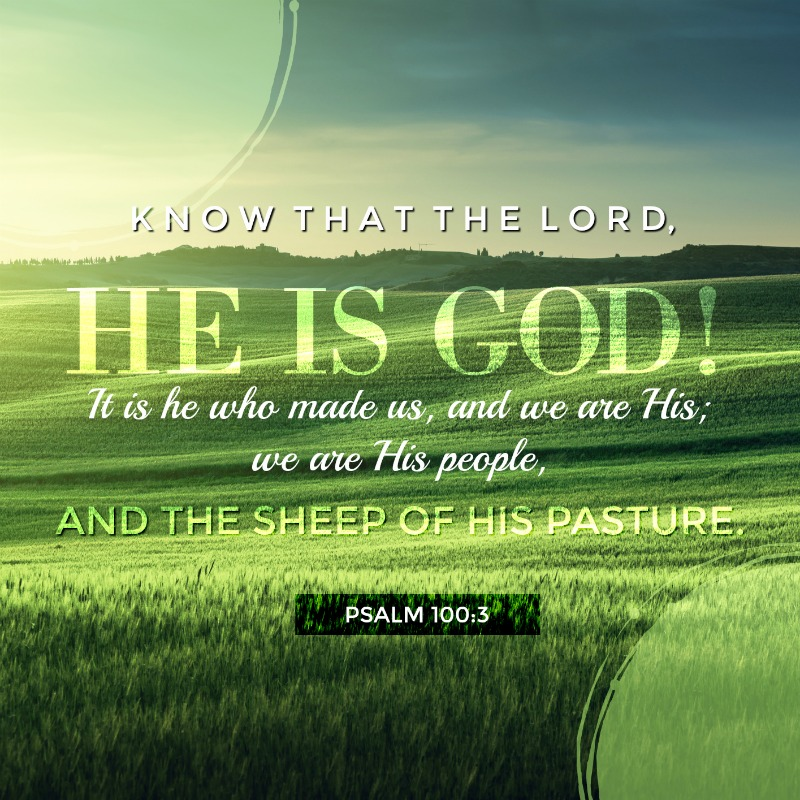 Daily Verse: Psalm 100:3