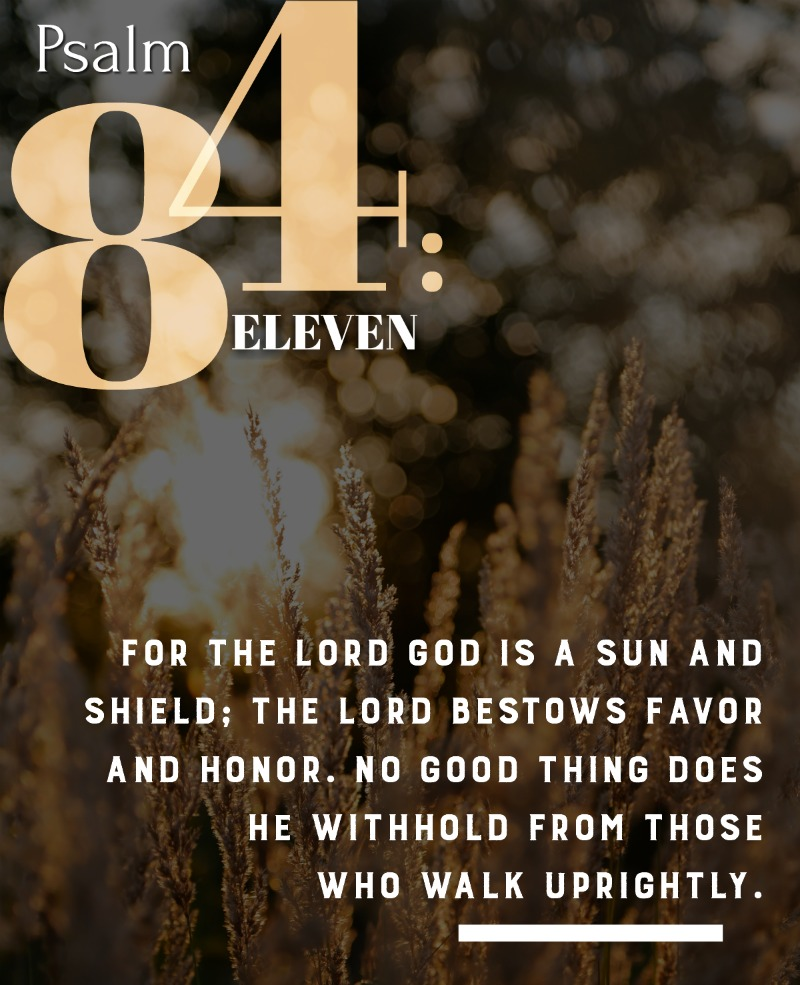 Daily Verse: Psalm 84:11