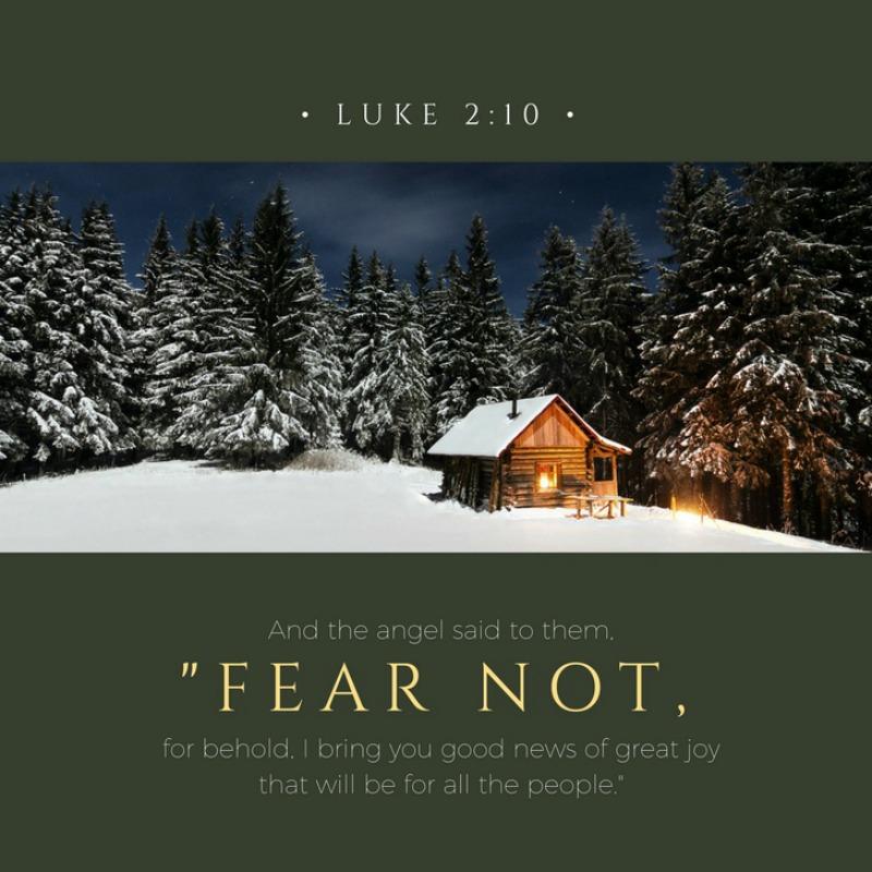 Daily Verse: Luke 2:10