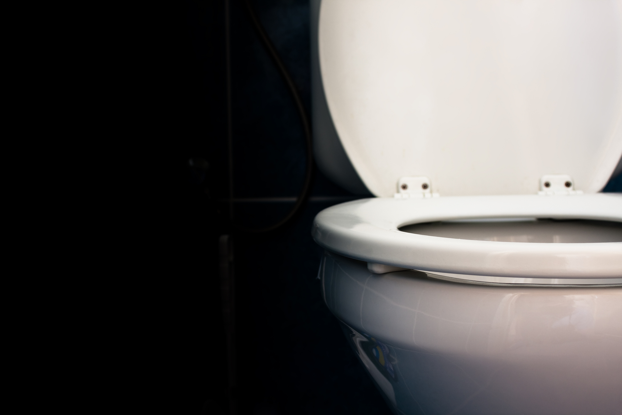 Should Our Kids Use Toilet Seat Covers?