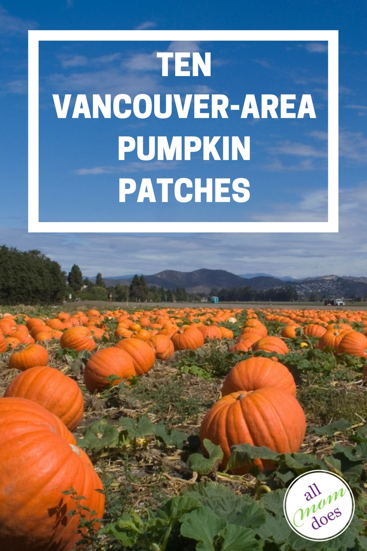 A list of pumpkin patches in and around Vancouver, BC.