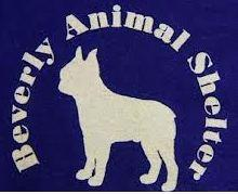 beverly-animal-shelter-logo