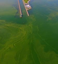 Photo by Tim Schneider, Owasco Lake Watershed Inspection Program
