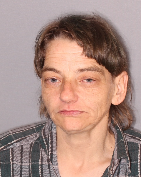 Seneca Falls Woman Arrested for Punching Out a Window