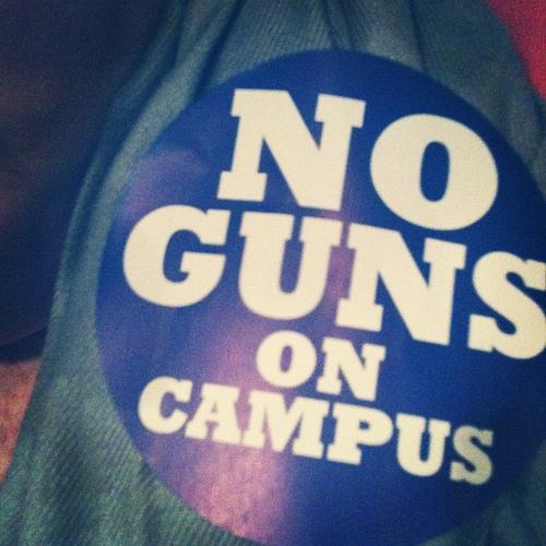 Seneca Falls Host Rally to Stop Gun Violence