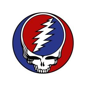 Members of Grateful Dead, Doors, Allman Brothers joining Bonnaroo 2014 Superjams