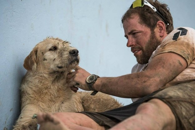 Stray Dog Followed An Extreme Sports Team All The Way To A New Home.