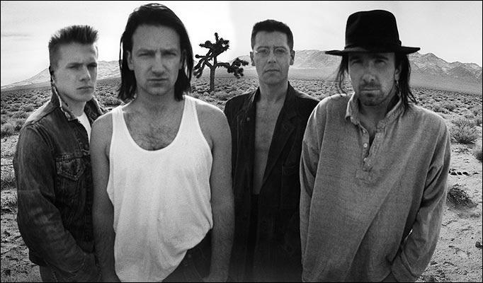 Joshua Tree Made Famous By U2 Album Vandalized