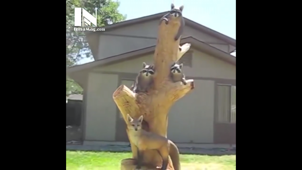 It starts with a big tree stump and ends with something pretty cool...