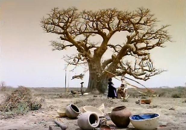 International Women's Day - Peter Gabriel & Youssou N'Dour - Shaking the Tree